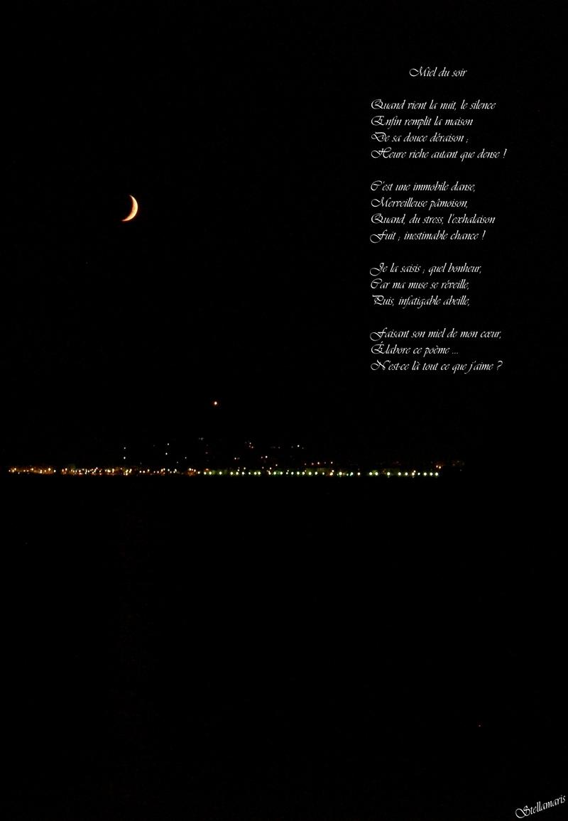 Miel du soir / / Quand vient la nuit, le silence / Enfin remplit la maison / De sa douce déraison ; / Heure riche autant que dense ! / / C'est une immobile danse, / Merveilleuse pâmoison, / Quand, du stress, l'exhalaison / Fuit ; inestimable chance ! / / Je la saisis ; quel bonheur, / Car ma muse se réveille, / Puis, infatigable abeille, / / Faisant son miel de mon cœur, / Élabore ce poème … / N'est-ce là tout ce que j'aime ? / / Stellamaris